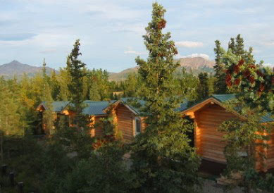 Park S Edge Log Cabin Accommdations Near Denali National In Alaska Value Lodging The Interior